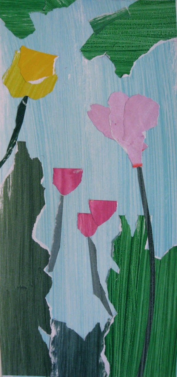 James Farrelly, Cyclamen