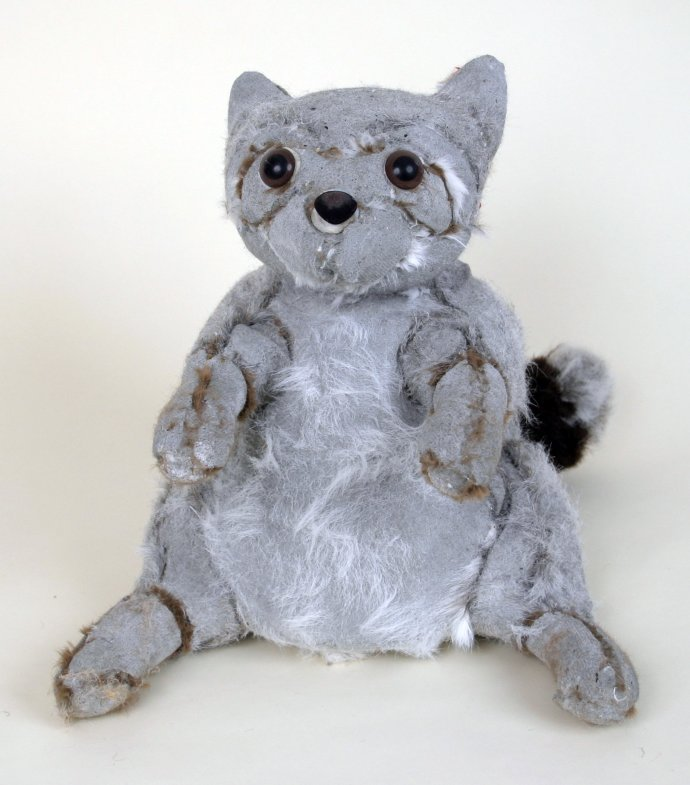 Ross Bonfanti, Raccoon, 2012