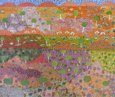 Julieanne Morton, Bush medicine plants on my country, 2011