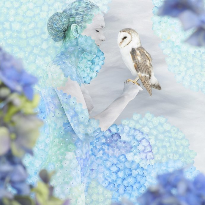 Emma Hack, Hydrangea Cradled Owl, 2013
