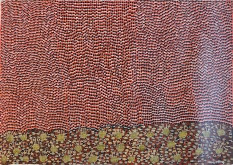 Nancy Mcdinny, Honey bee (warjilli), 2011