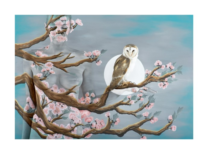 Emma Hack, Peach Blossom with Owl, 2014