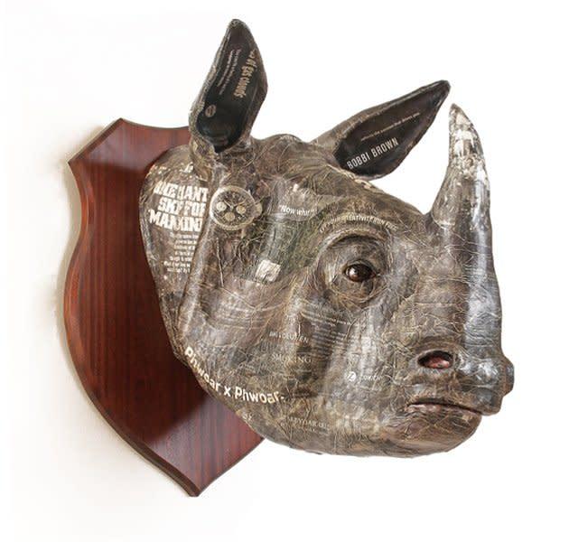 David Farrer, Indian Rhino, 2013