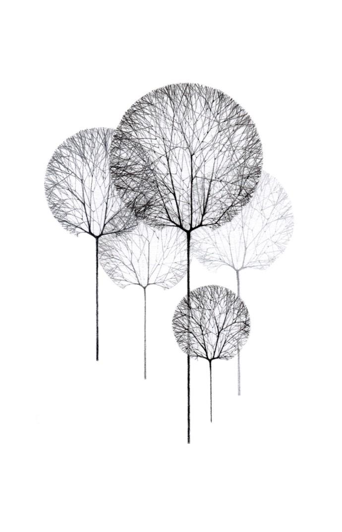 Jackie Case, Line Trees, 2014