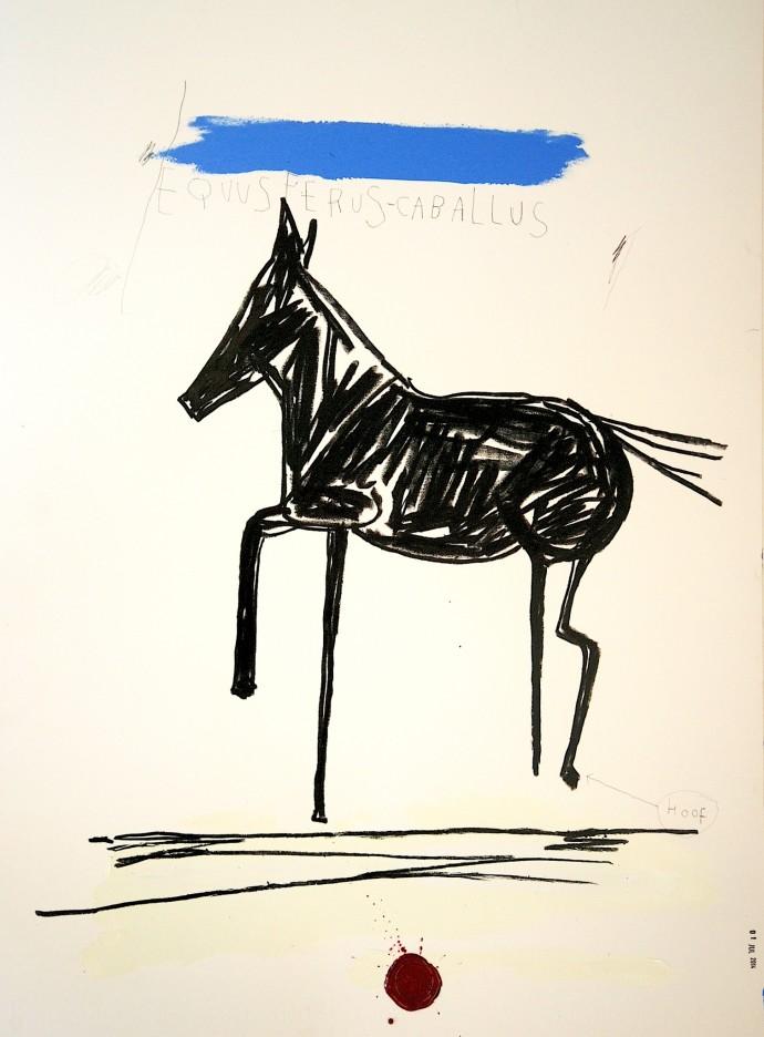 Stephen Anthony Davids, Equus Ferus Caballus III, 2014