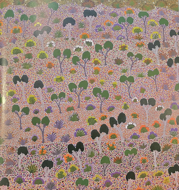 Lily Morton Akemarr, Ampilatwatja Country, 2011