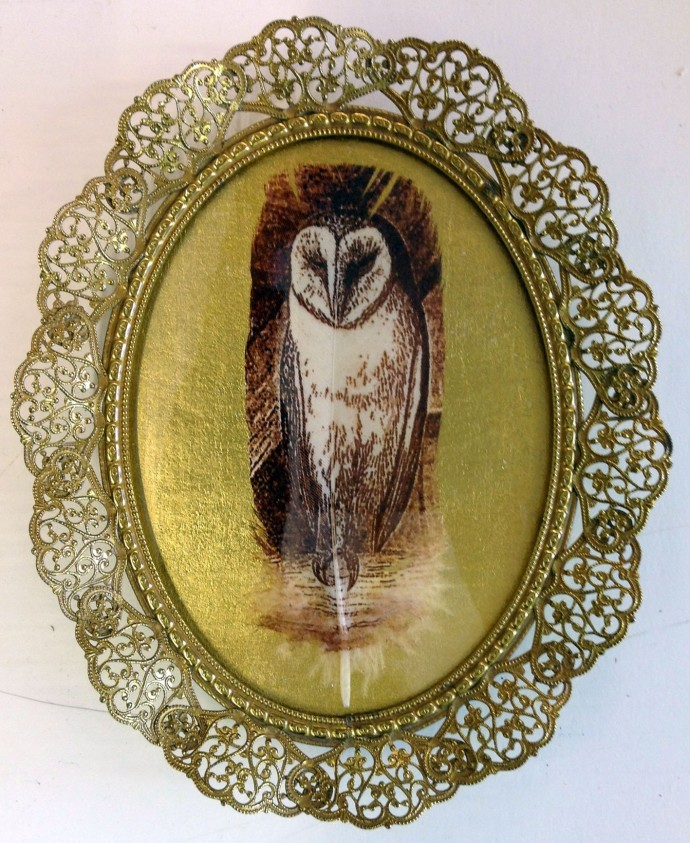Rebecca Jewell, Barn Owl on Gold in Vintage Frame, 2014