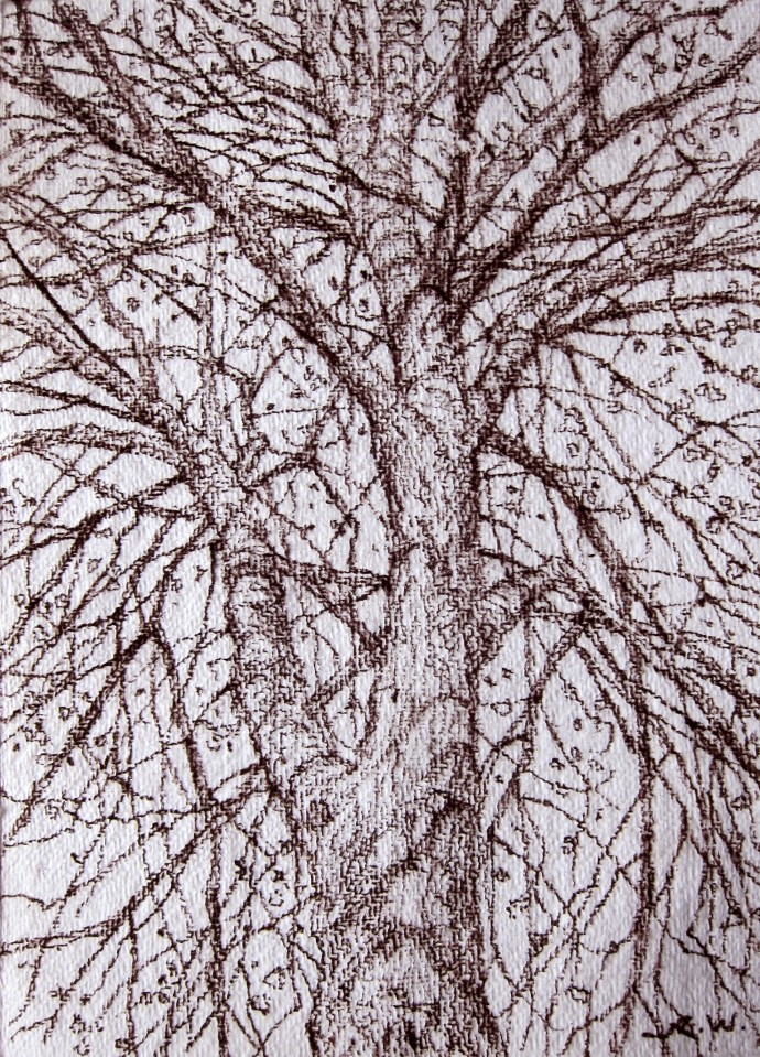 <div class=&#34;artist&#34;><strong>Roy Wright</strong></div><div class=&#34;title&#34;><em>Spring</em>, 2015</div><div class=&#34;medium&#34;>charcoal on paper</div><div class=&#34;dimensions&#34;>20 x 15 cm</div>