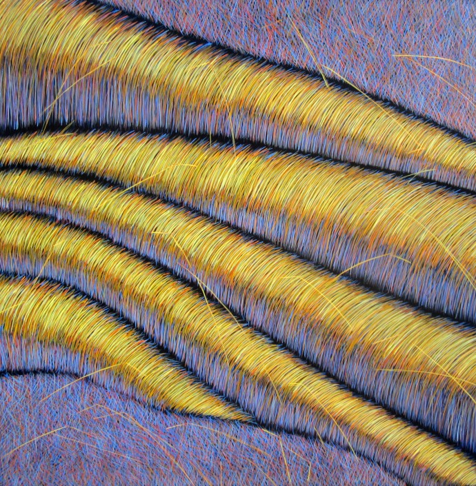 Yvonne Mills-Stanley, Grass Memories IV, 2014