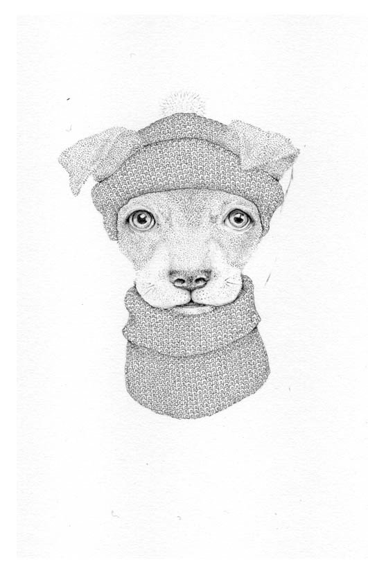 Jackie Case, Knitted Dog, 2016