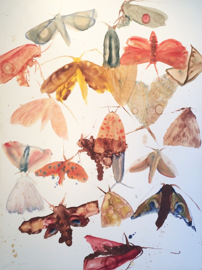 Allyson Reynolds, Moths 2, 2009