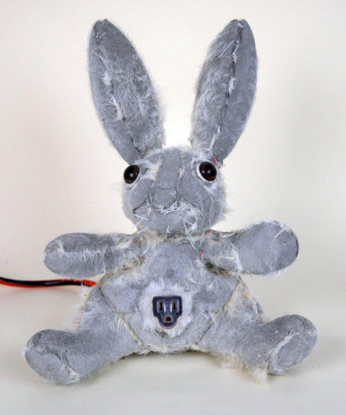 Ross Bonfanti, Power Source Bunny