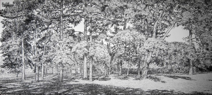 <div class=&#34;artist&#34;><strong>Roy Wright</strong></div><div class=&#34;title&#34;><em>In the Pines (Kew Gardens)</em>, 2016</div><div class=&#34;medium&#34;>charcoal on paper</div><div class=&#34;dimensions&#34;>70 x 136 cm<br>27 1/2 x 53 1/2 in</div>