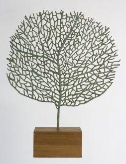<div class=&#34;artist&#34;><strong>Abigail McLellan</strong></div><div class=&#34;title&#34;><em>Large Seafan</em>, 2008</div><div class=&#34;medium&#34;>bronze sculpture</div><div class=&#34;dimensions&#34;>100 x 120cm</div><div class=&#34;edition_details&#34;>Edition of 9</div>
