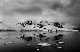 Garlinda Birkbeck, Reflections, 2012