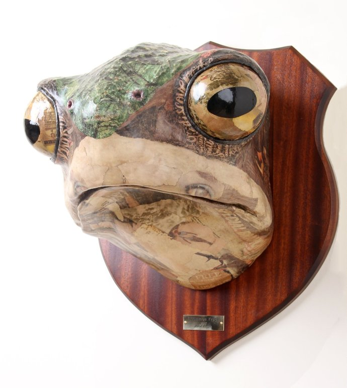 David Farrer, Common Frog, 2013