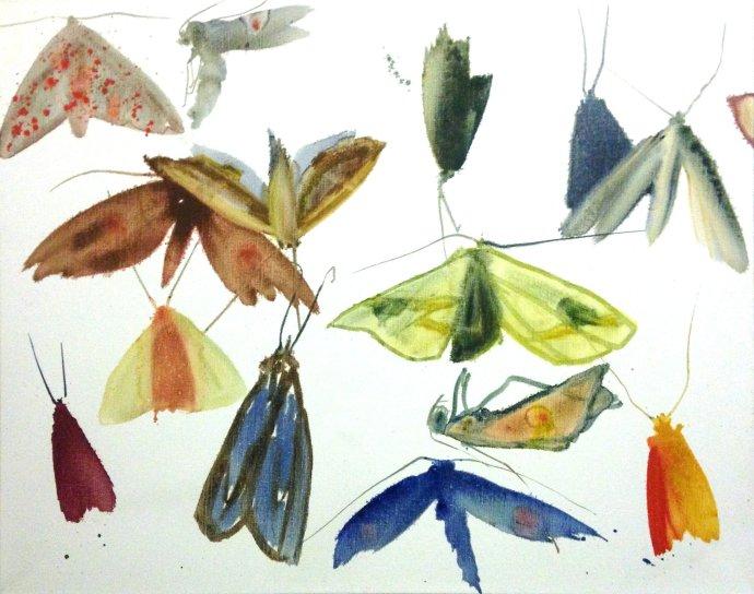Allyson Reynolds, Untitled V (Moths), 2010