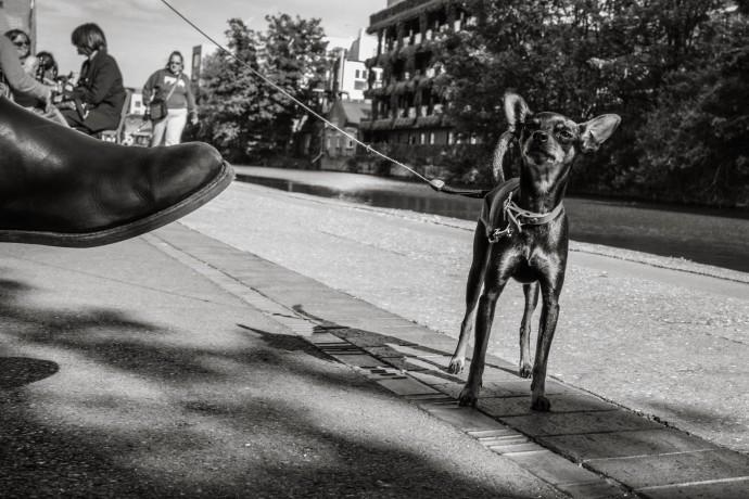 Derren Brown, Untitled 2, 2014