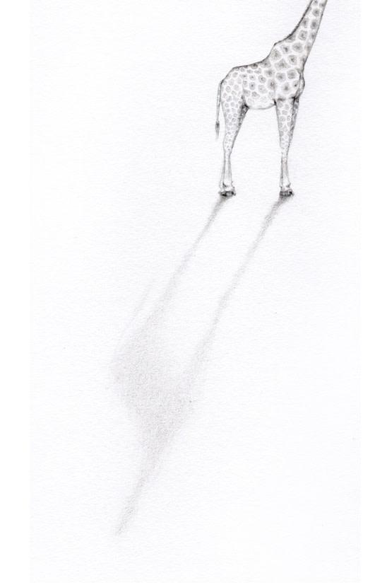 Jackie Case, Headless Giraffe, 2015