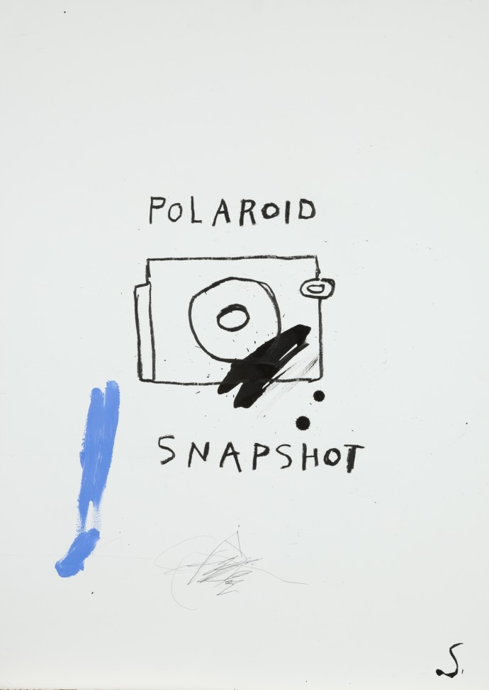 Stephen Anthony Davids, Polaroid, 2014