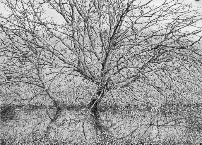 <div class=&#34;artist&#34;><strong>Roy Wright</strong></div><div class=&#34;title&#34;><em>At The Water's Edge</em>, 2017</div><div class=&#34;medium&#34;>charcoal on paper</div><div class=&#34;dimensions&#34;>104 x 138 cm<br>41 x 54 3/8 in</div>