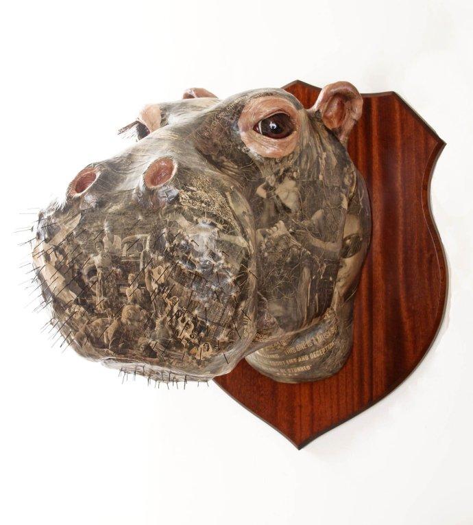 David Farrer, Hippo, 2013