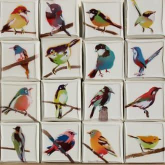 Datsun Tran, Birds, 2010