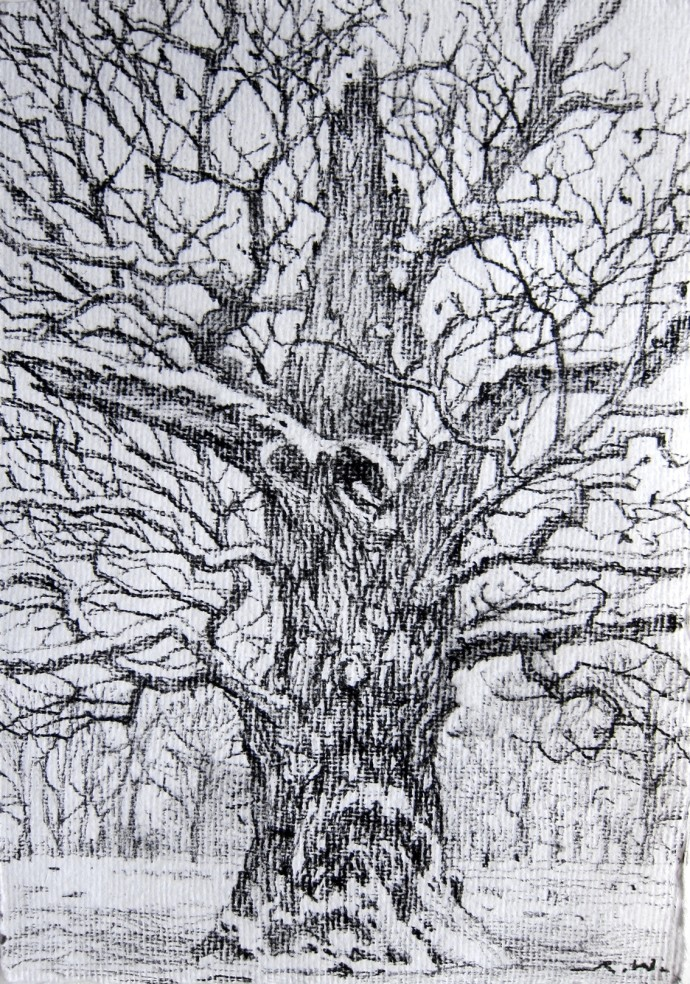 <div class=&#34;artist&#34;><strong>Roy Wright</strong></div><div class=&#34;title&#34;><em>Winter</em>, 2015</div><div class=&#34;medium&#34;>charcoal on paper</div><div class=&#34;dimensions&#34;>20 x 15 cm</div>