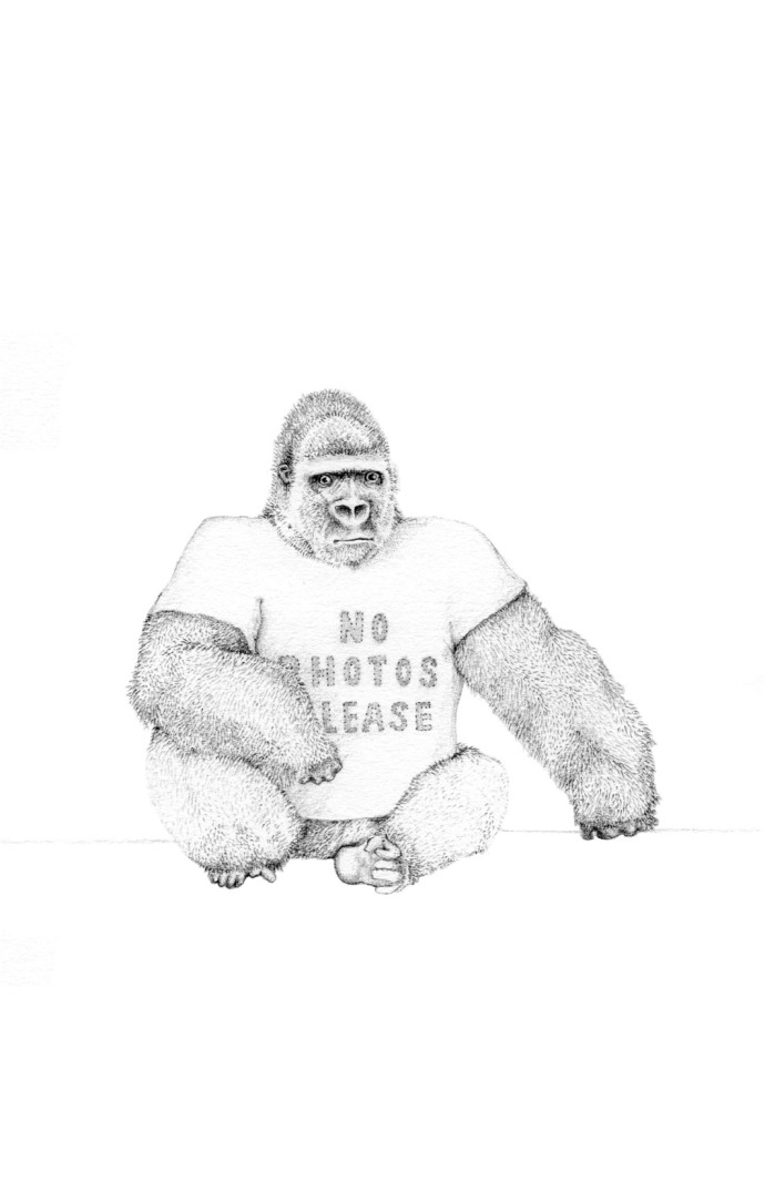 <div class=&#34;artist&#34;><strong>Jackie Case</strong></div><div class=&#34;title&#34;><em>No Photos Please</em>, 2014</div><div class=&#34;medium&#34;>graphite on paper</div><div class=&#34;dimensions&#34;>27 x 22 cm</div>