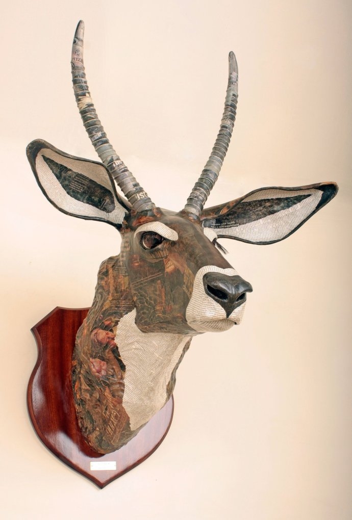 David Farrer, Waterbuck, 2012