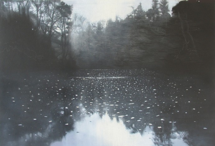 Sheila Clarkson, November Abbots Pool 2, 2015