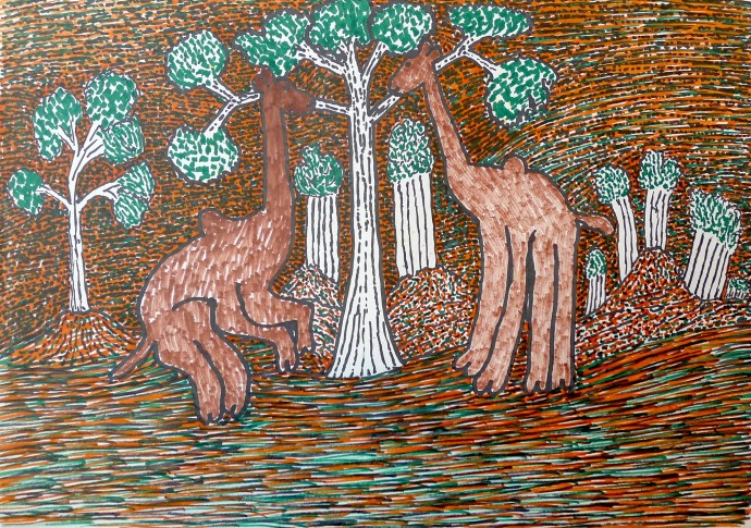 Jimmy Pike, Two camels near Broome