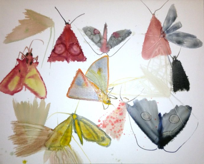 Allyson Reynolds, Untitled III (Moths), 2010