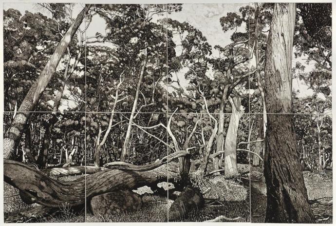 David Frazer, The Tangled Wood (Composition I), 2018