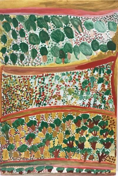 Jukuna Mona Chuguna, Turtujartiwarnti- Kurrmalyikurrmalyi, 2009