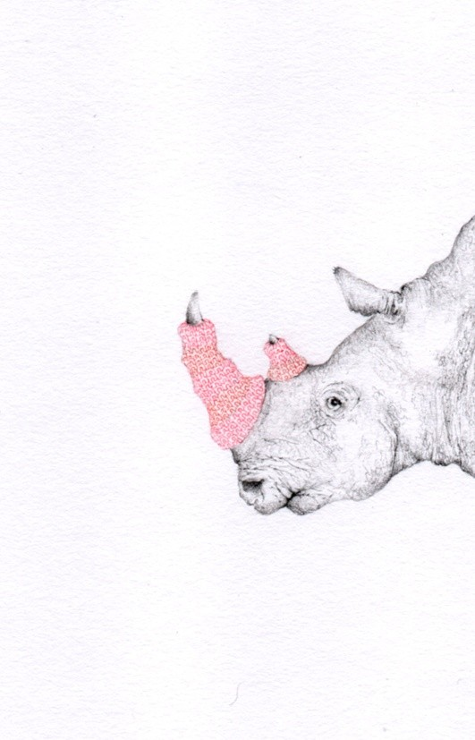Jackie Case, Knitted Rhino Horn, 2016