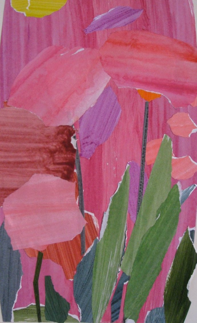 James Farrelly, Flowers Magenta