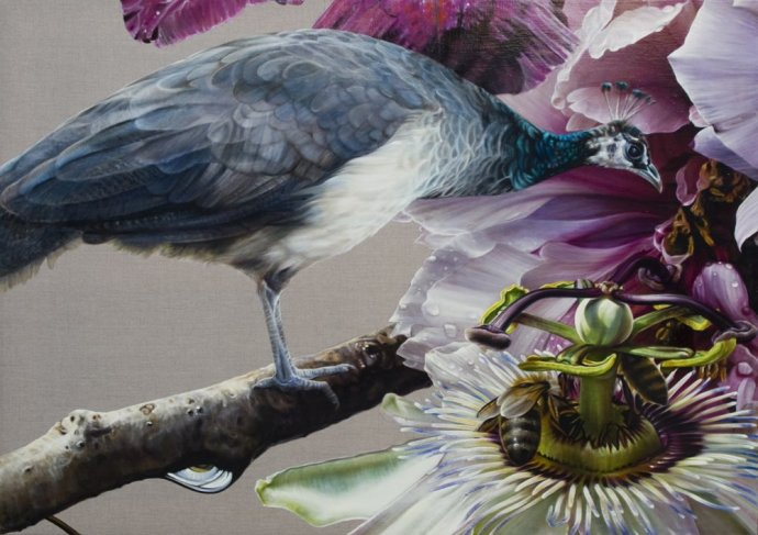 Anne Middleton, Peafowl in contemplation, 2012