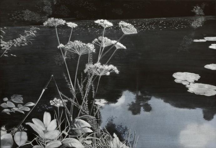 Sheila Clarkson, Water's Edge, 2015