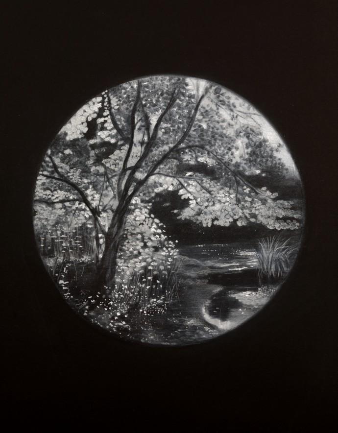 Sheila Clarkson, Illuminated Tree, 2015