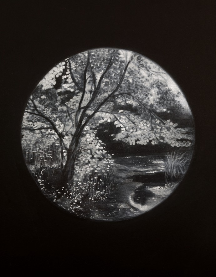 Sheila Clarkson, Illuminated Tree, 2015, pastel on paper on card, 87.5 x 73 cm