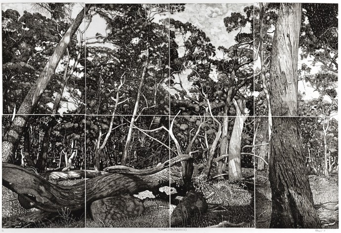 David Frazer, The Tangled Wood (composition I), 2018, etching, 80 x 120 cm