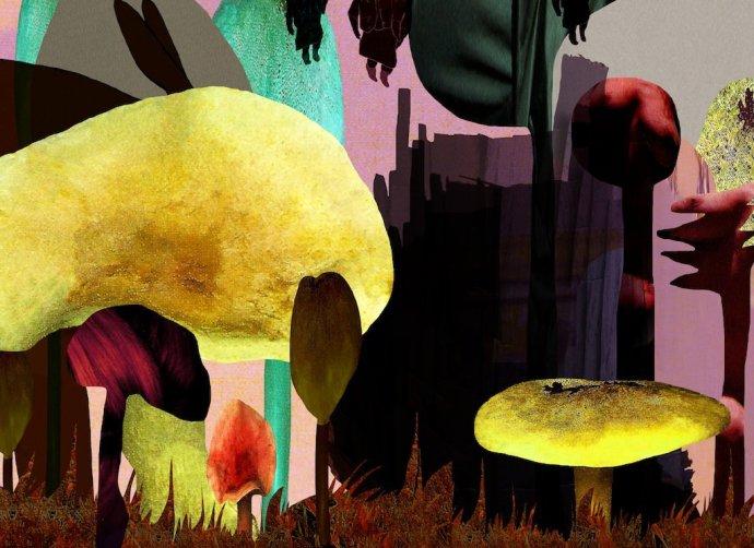 <p><strong>Katja Angeli</strong>,&#160;<em>Shed</em>, 2013, digital print on silk, 80 x 100cms</p>