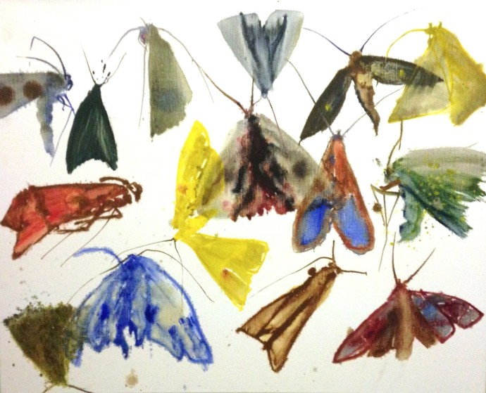 Allyson Reynolds, Untitled VI (Moths), 2011, thinned down oil paint on fine linen, 80 x 100 cm, 31 1/2 x 39 3/8 in