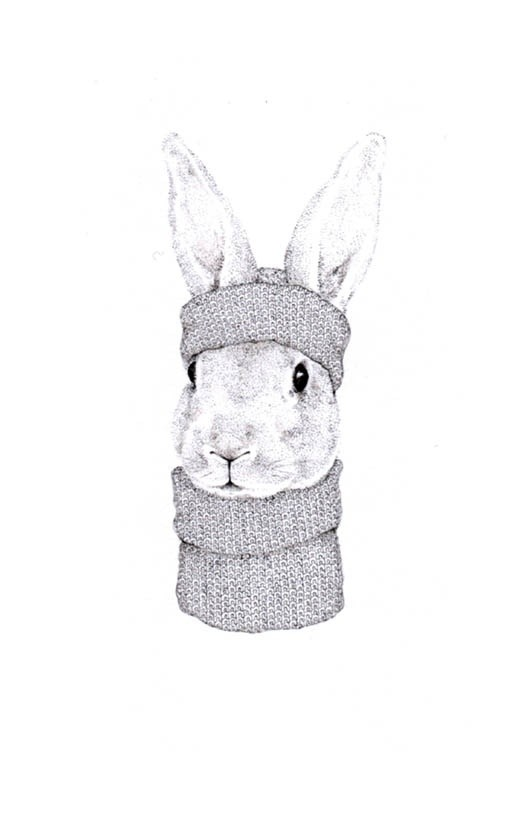 Jackie Case, Knitted Bunny, 2016
