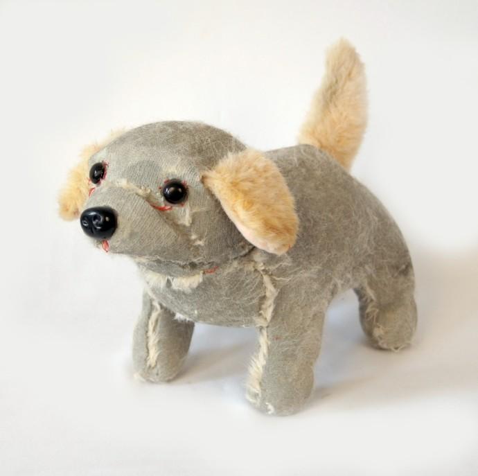 Ross Bonfanti, Pup c500, 2014