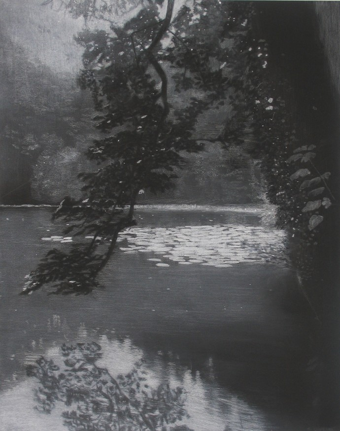 Sheila Clarkson, Reflections at Abbot Pool, 2014