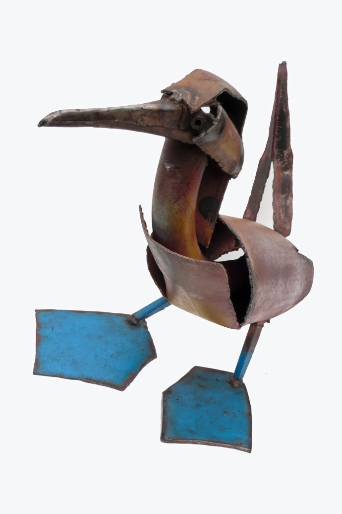 Iain Nutting, Blue Footed Booby, 2015