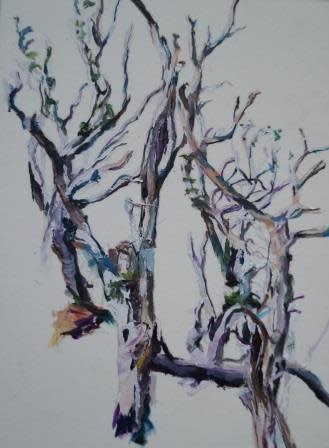 Patricia Cain, Three trees, Argyll, 2017