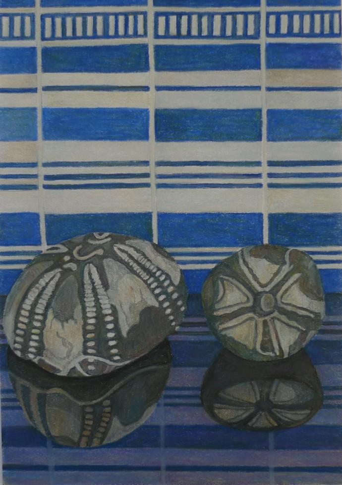 Aaron Kasmin, Sea Urchins, 2015